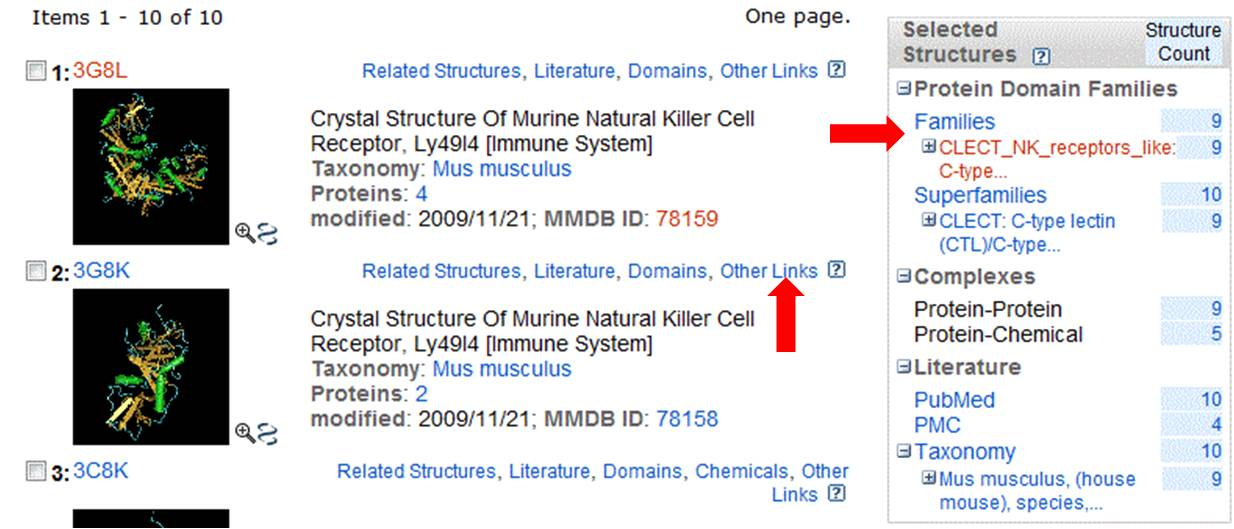 NCBI_structure_search_results
